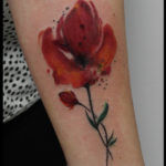 laurelarth tattoo tatoueur lyon coquelicot aquarelle watercolour poppy